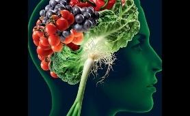 BBC Documentary 2017 - Food on the Brain - BBC Documentary
