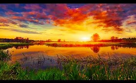 5k Virtual Nature 360° GOOD Morning Music 528Hz - Boost Your New Day Connected With Mother Nature