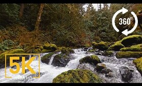 Virtual Nature Relaxation - VR 360° 5K Video - Stones of the Skagit River - WA State, USA